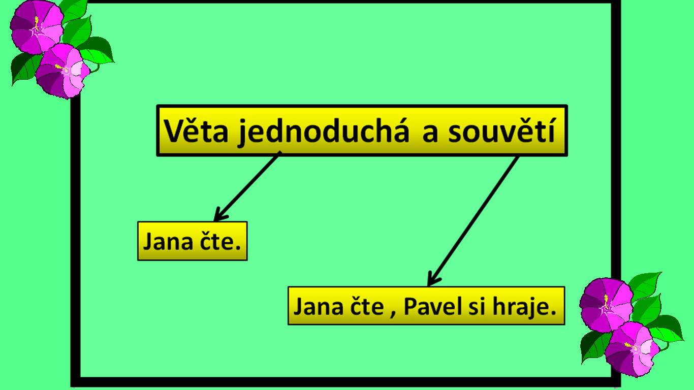vet001.jpg